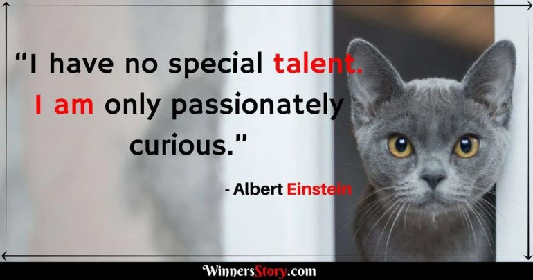 Albert Einstein quotes on Education_I have no special talent. I am only passionately curious.