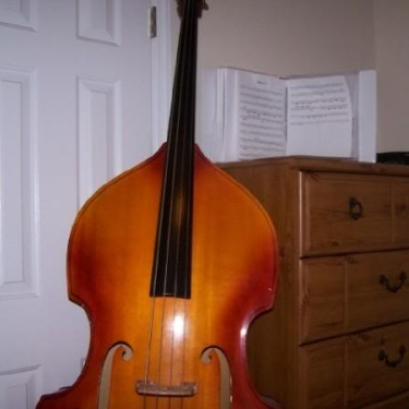 My Pride and Joy Double Bass