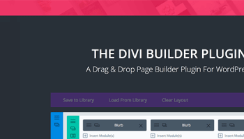 Genesis or Divi? – How To Choose Between The Two!