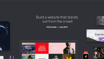 35+ Stunning Examples of Salient – ThemeNectar's Top-Selling WordPress Theme – In Action