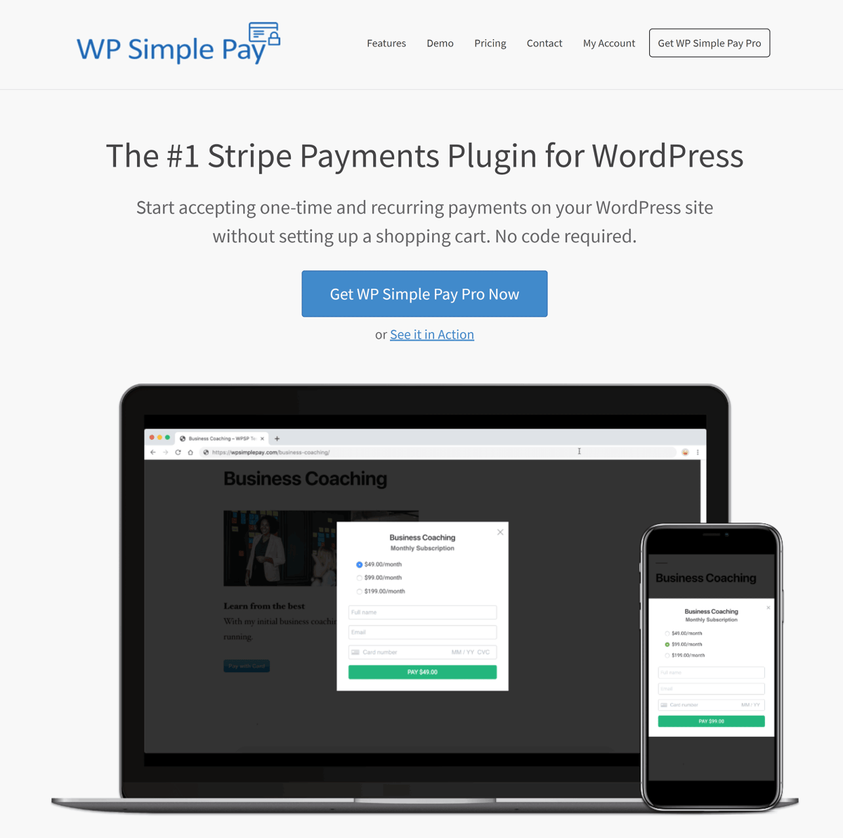 WP Simple Pay Home Page
