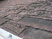 old asphalt shingles