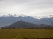 Andes and vineyards