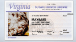 Maximus Has A Driver's License #DogTested