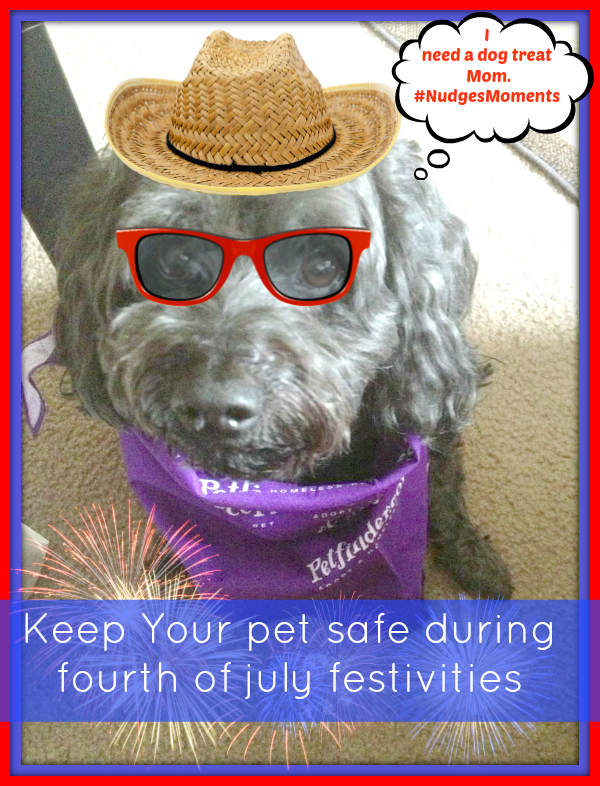 Keep your pets safe during the 4th of July. Dog treats made in the usa keeps him busy during this scary time. #cbias