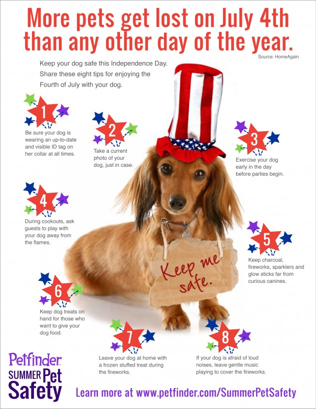 Safety tips for pets on the 4th of july