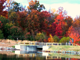 Fall Beauty In Virginia: Photos From My Collection #Fallinva #autumn