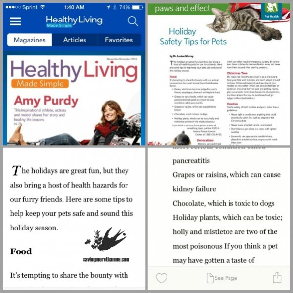 Healthy Living app Check Out The Pet Gifts I Found At Sam's Club {Plus, A DIY Flannel Pet Bed} #SimplyHealthy #ad winterandsparrow.com