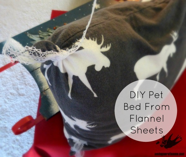 Check Out The Pet Gifts I Found At Sam's Club {Plus, A DIY Flannel Pet Bed} #SimplyHealthy #ad winterandsparrow.com
