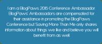 Blog Conferences Aren't Just About Blogging #blogpaws #sponsored {Bonus: Scenes from Lake Las Vegas @WestinLakeLV} winterandsparrow.com