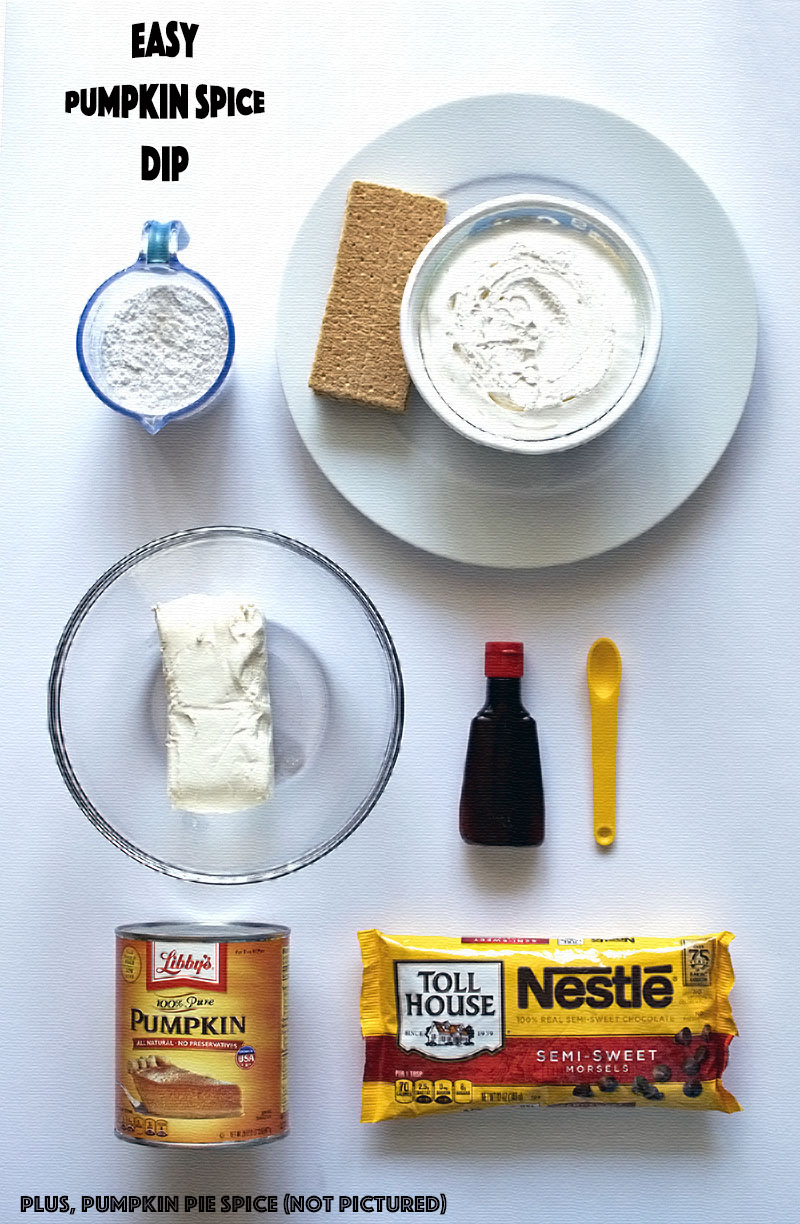 Easy Holiday Snack: Pumpkin Spice Dip @DollarGeneral #ad