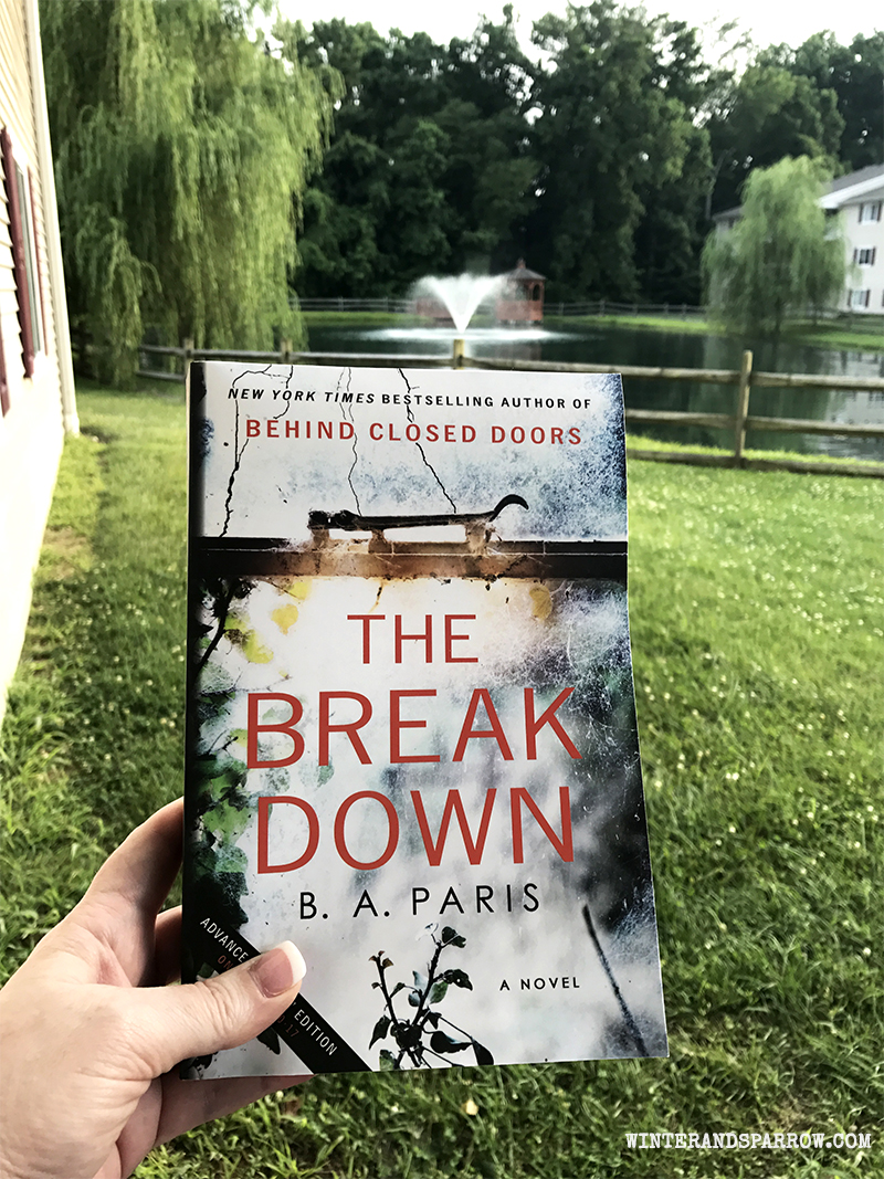 A Thrilling Summer Read:  The Breakdown #summerreadinglist #bibliophile | winterandsparrow.com