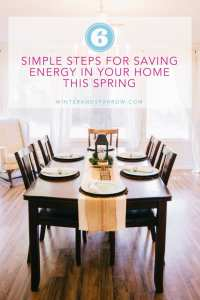 6 Simple Steps for Saving Energy In Your Home This Spring winterandsparrow.com