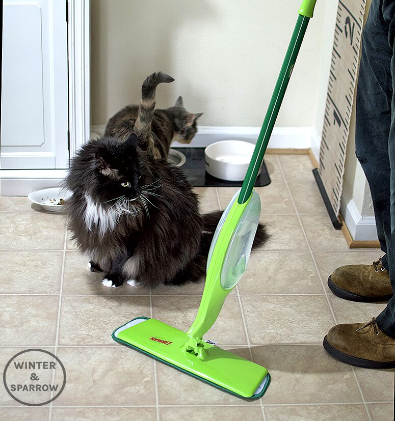 Four Curious Cats + One Energetic Dog = A Mess But This One Tool Makes Pet Life Easier #ad #CelebratePetsWithLibman   winterandsparrow.com