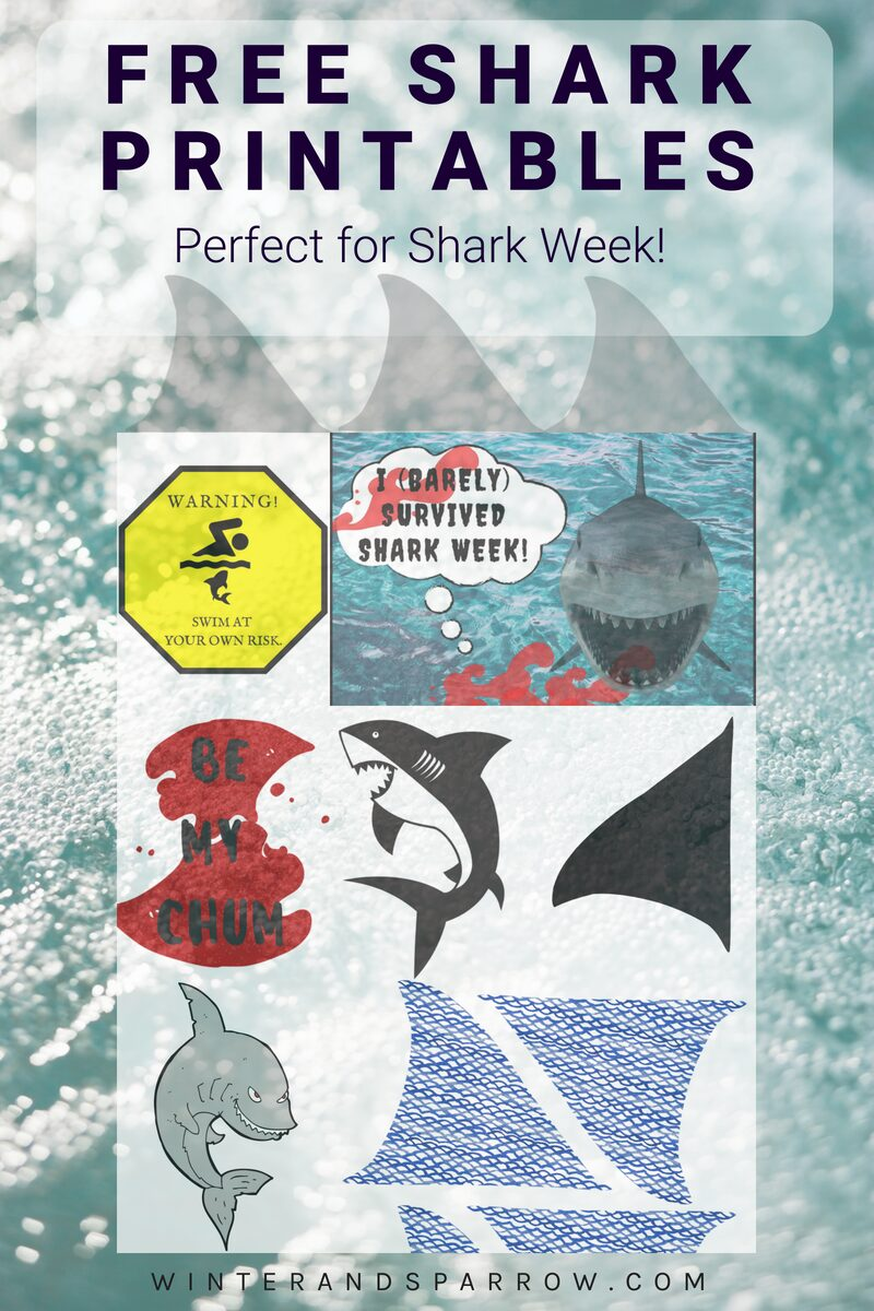 picture regarding Free Printable Photo Booth Props Template named Absolutely free Shark Printables: Ideal for #SharkWeek or Celebration Picture