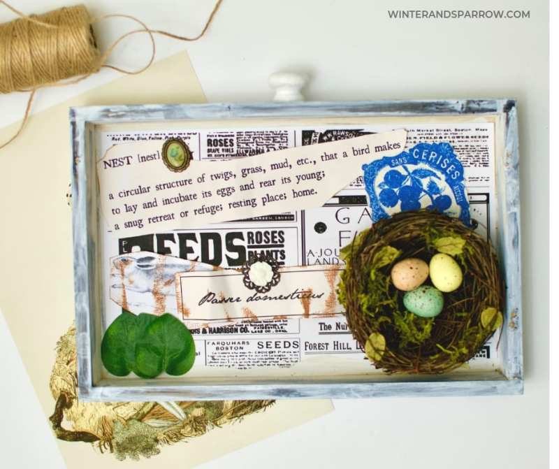 Bird Nest Craft Idea:  A Vintage-Inspired Shadow Box That Only Looks Expensive {Video} | winterandsparrow.com #easyspringcrafts #birdnestcrafts #springcrafts