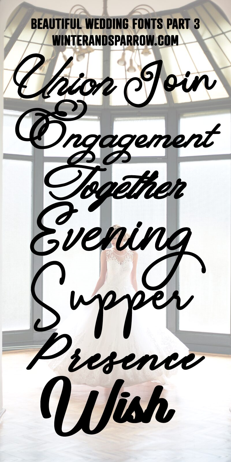 20 {More} Beautiful Wedding Fonts: Calligraphy + Hand-Lettered [free for personal use] | winterandsparrow.com #freecalligraphyfonts #freeweddingfonts #freehandletteredfonts #calligraphy