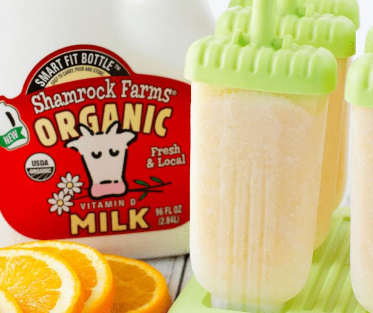"Healthy Orange ""Creamsicle"" Popsicle Recipe"