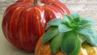 DIY Home Decor Idea: Pumpkin Succulent Planter