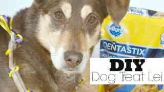 DIY Dog Treat Lei