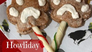 Howliday Dog Cookie Pops and New Purina Pro Plan Bright Mind Dog Food