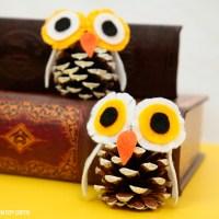 Pine Cone Winter Owl Craft