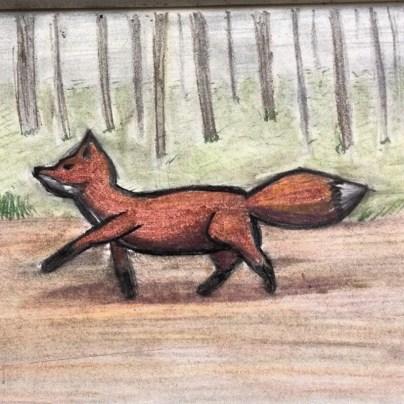 fox in pastels
