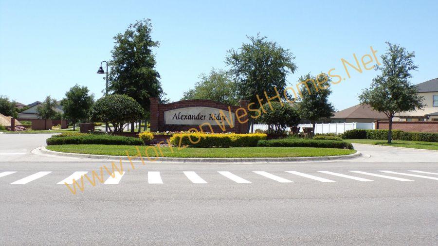 Alexander Ridge Winter Garden Florida Homes for Sale
