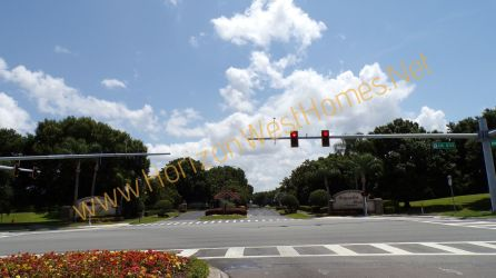 Magnolia Park homes for sale. Windermere Florida. real estate gated community