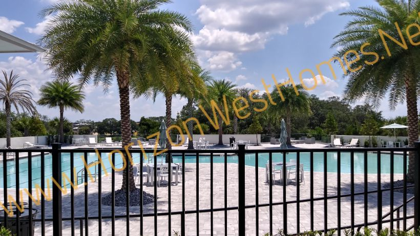 Waterside Pool.  In Winter Garden Florida.  Homes for sale. Rich Noto Real Estate