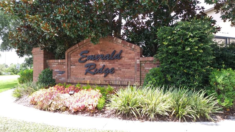 Emerald Ridge Homes For Sale in WInter Garden Florida