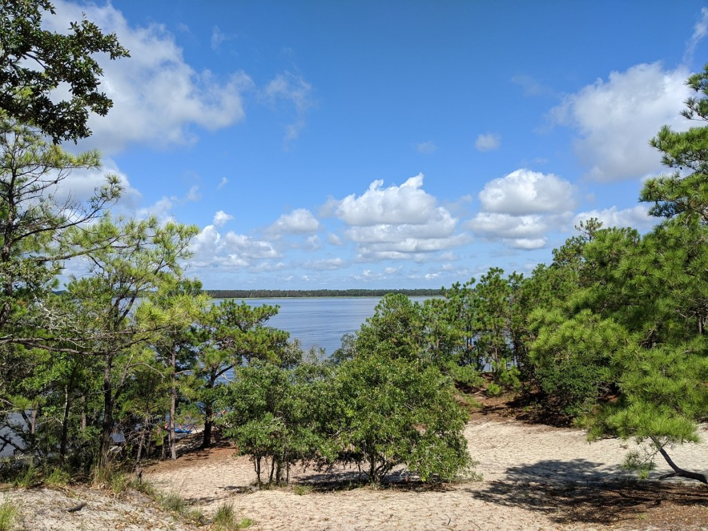 "View of the Cape Fear River from the ""Sugar Loaf"" hill at Carolina Beach State Park"