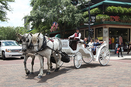 horsecarriage_brickroad