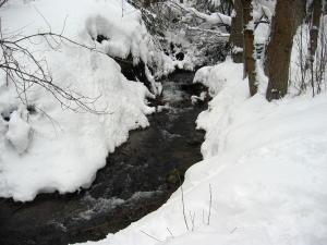 snowshoe-8.jpg