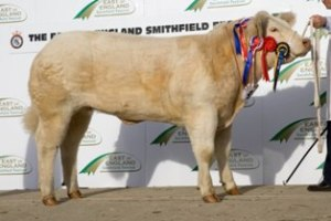 2122011 EESF Overall Champ