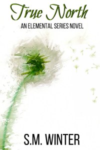 Cover for True North: An Elemental Series Novel