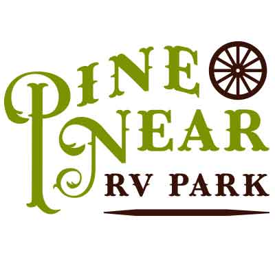 Pine Near RV park Winthrop WA