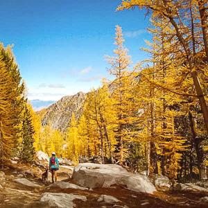 go hiking in winthrop washington north cascades national park