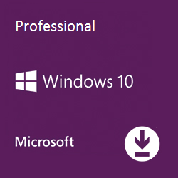 Windows 10 Professional ISO download