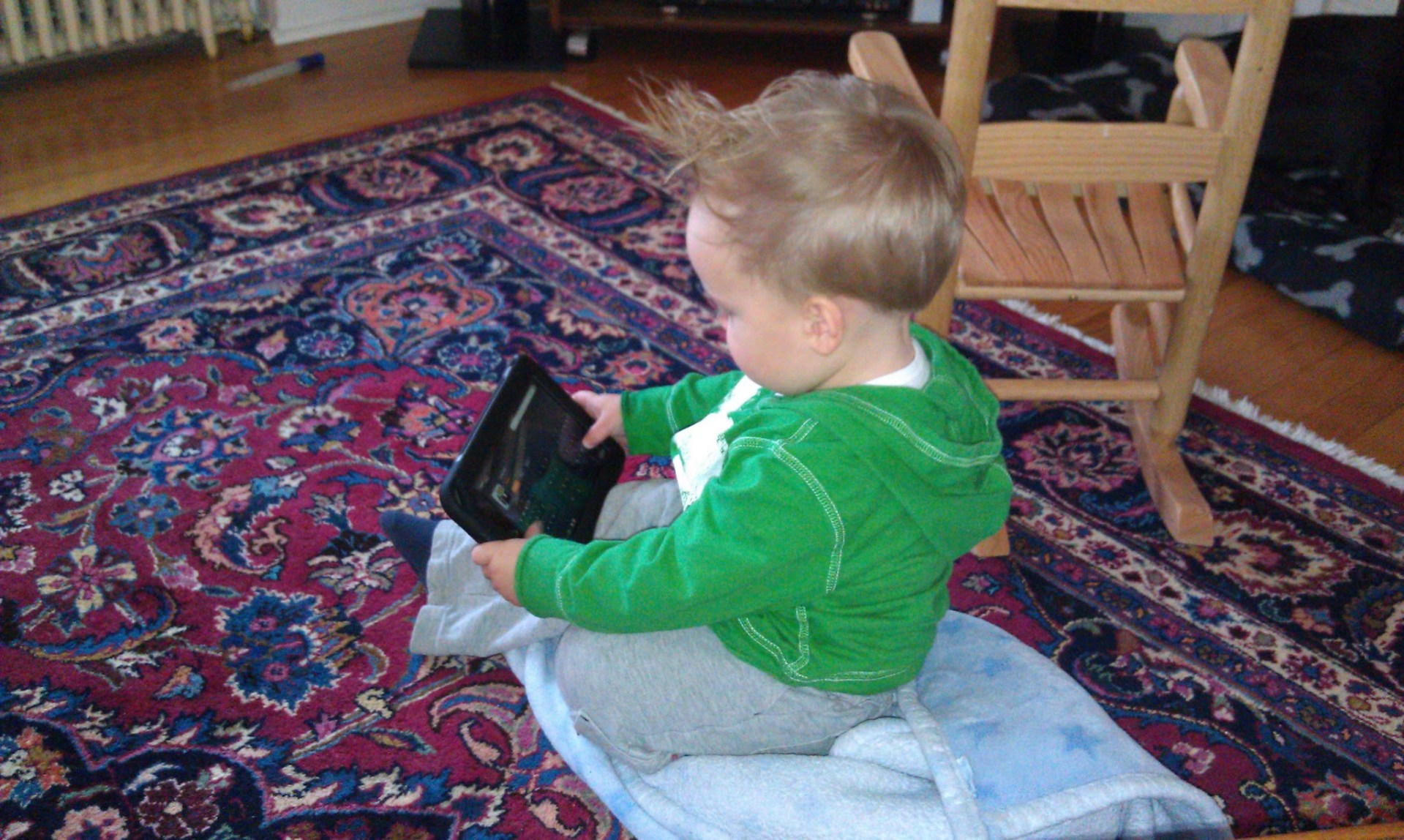 Raising a Digital Native