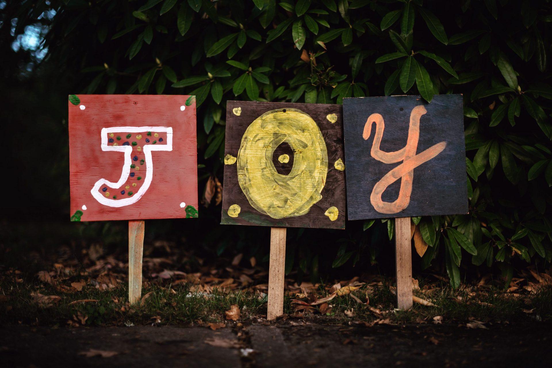 <span class='p-name'>Joy, Love, & Aesthetic Fulfillment</span>