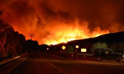 incendio en California, evacuación en California por incendio, incendio incontrolable en Ventura, incendio en Santa Paula, estado de emergencia por incendio en California