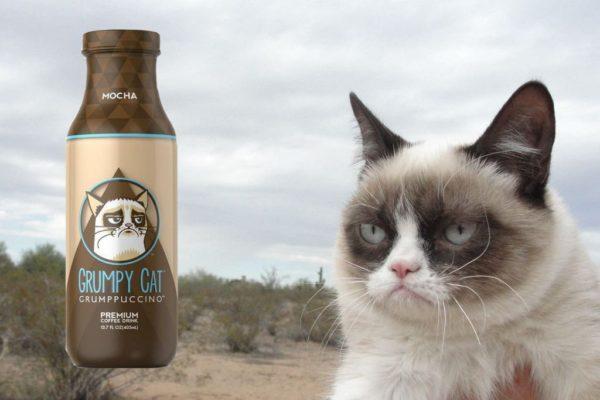 El famoso meme de Grumpy Cat gana demanda millonaria grumpy11-600x400