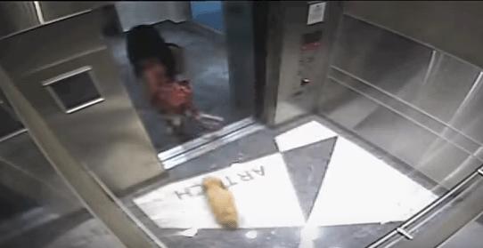 Video: Instagrammer golpea a su perro en un elevador Captura-de-pantalla-2018-04-03-a-las-17.08.51