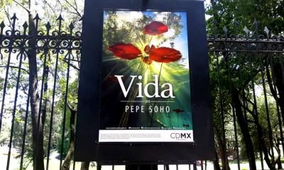 'Vida' al Bosque de Chapultepec