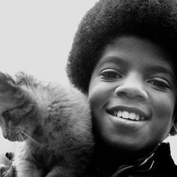 Día Internacional del Gato: celebridades que aman a los mininos amichaelj-medium