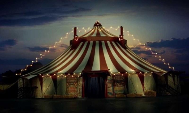 Denuncian a circo por maltrato animal, eran peluches Denuncian-a-circo-por-maltrato-animal-1