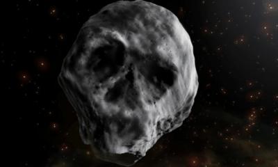 asteroide 'calavera'