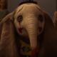 nuevo trailer de 'Dumbo'