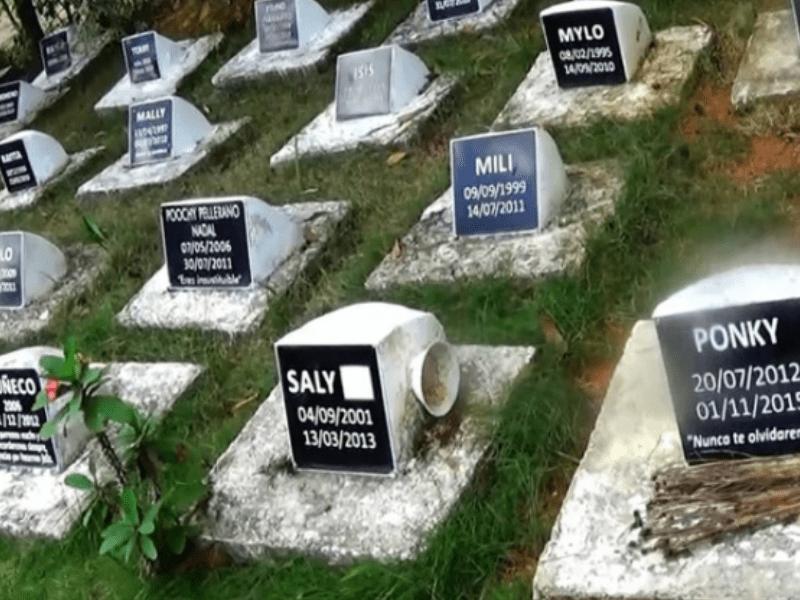 cementerios de mascotas más famosos del mundo